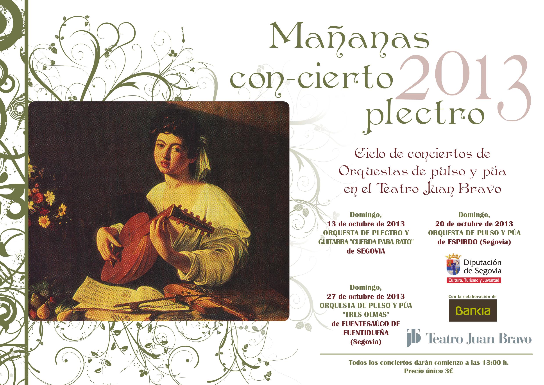 Cartel_concierto_plectro_ diputacion