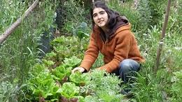El Curso está dirigido a jóvenes que se incorporen a la actividad agraria