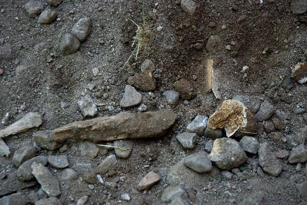 Restos óseos. Iglesia de Torrecaballeros