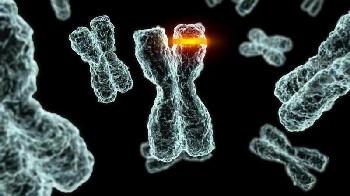 microbiologia molecular / virus