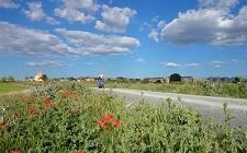 """Ya está en vigor la a ordenanza que regula su uso de la Vía Verde """"Valle del Eresma"""""""