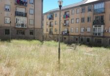 El PP pedirá en el pleno del Ayuntamiento la limpieza continúa de los patios de San José